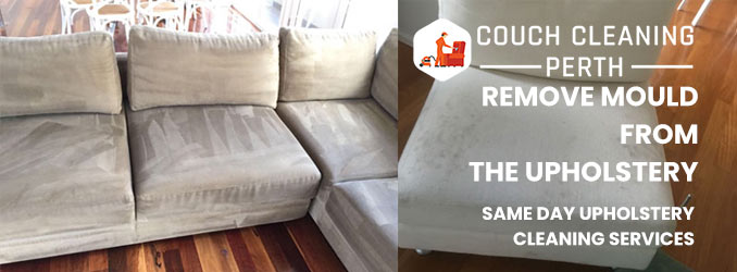 Remove Mould From The Upholstery